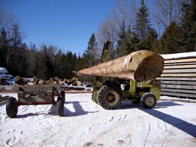 The freshly debarked log being brought into the mill