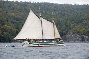 Full sail (photo: Kerry Batdorf)